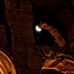 Foto Roma – Colosseo con luna