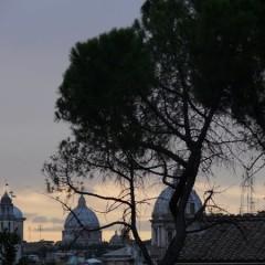 Foto Roma – Scorcio Roma con Alberi