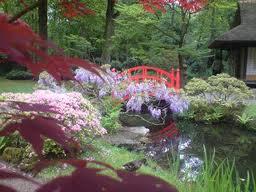 Il giardino giapponese a roma un opera di ken nakajima pro loco