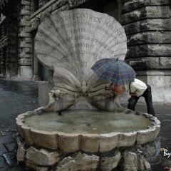 Angelo Mele – Fontana delle Api