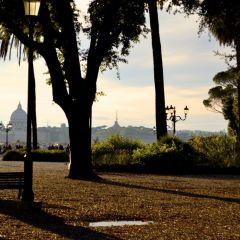 Marco Mutolo – Vista San Pietro dai giardini del Pincio