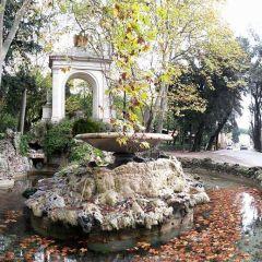 Massimo Meli – Fontana del Fiocco – Villa Borghese