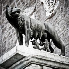 Michele Rallo – Campidoglio, Lupa Capitolina