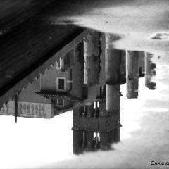 Emanuela Genovese – Riflessi