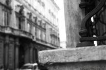 Emanuela Genovese – Dettagli