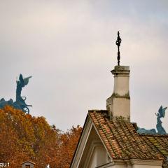 Federica Sequi – Angeli del Vittoriano da Lungotevere