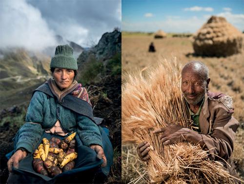 National Geographic Italia. Food, il futuro del cibo - Uno degli scatti della mostra
