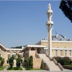 Moschea di Roma | Centro Islamico culturale