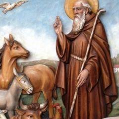 Fuoriporta: nel weekend a Cerveteri c'è la festa di Sant'Antonio Abate