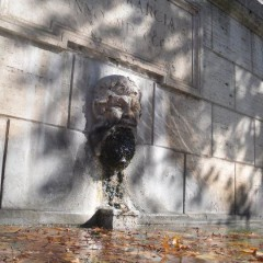 Foto Roma – Fontana Scocio