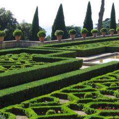 Giardini Vaticani