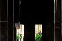 Alessandro Palmesi – Vicolo del Biscione 2