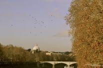Marco Mutolo – La Cupola di San Pietro