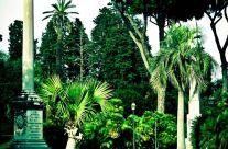 Michele Rallo – Villa Torlonia Scorcio