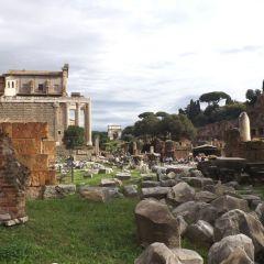 Stefania Vassura – Foro Romano