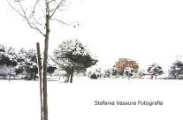 Stefania Vassura – Parco Meda Neve 2012