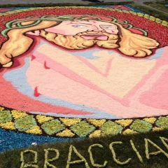 Tappeto Bracciano – Lazio