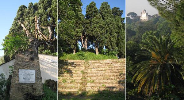 Quercia ed Anfiteatro del Tasso, Gianicolo Roma