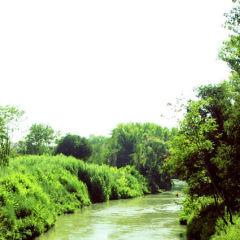 Riserva Naturale dell'Aniene