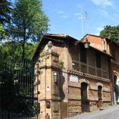 Villa Strohl Fern